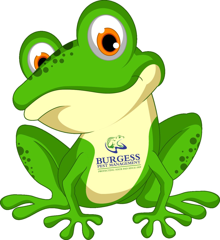 burgessfrog.png